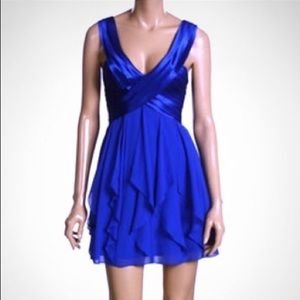 BEAUTIFUL BCBGMaxazria Dress